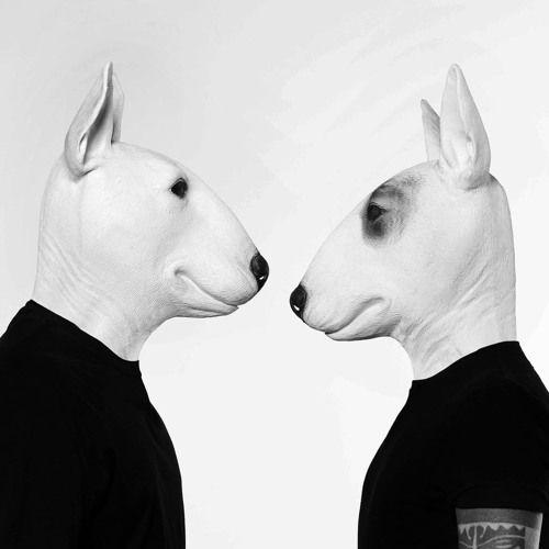 Cover for artist: Neverdogs