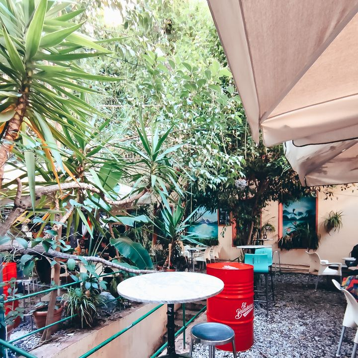 Cover for venue: Bar Jardín