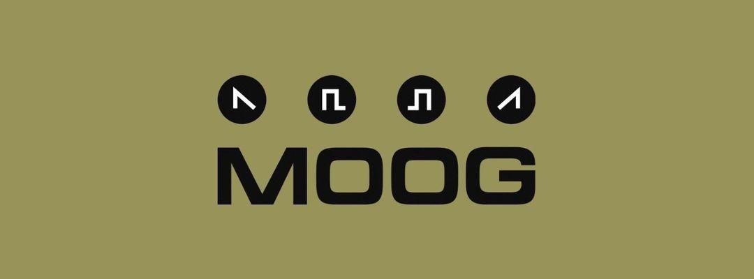 Couverture de l'événement MOOG DJs: GUS VAN SOUND + UROZ