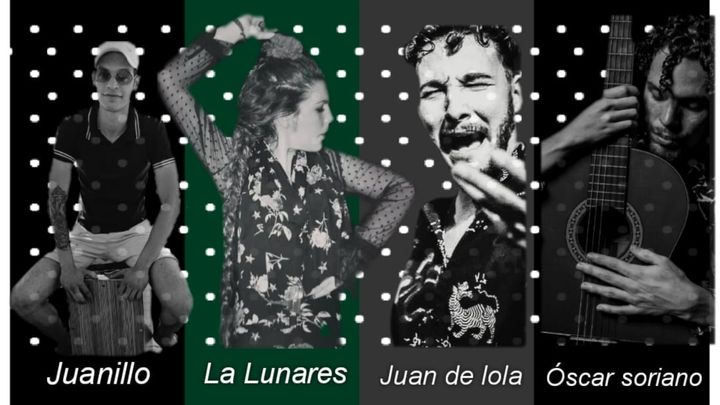 Cover for event: Noche Flamenca