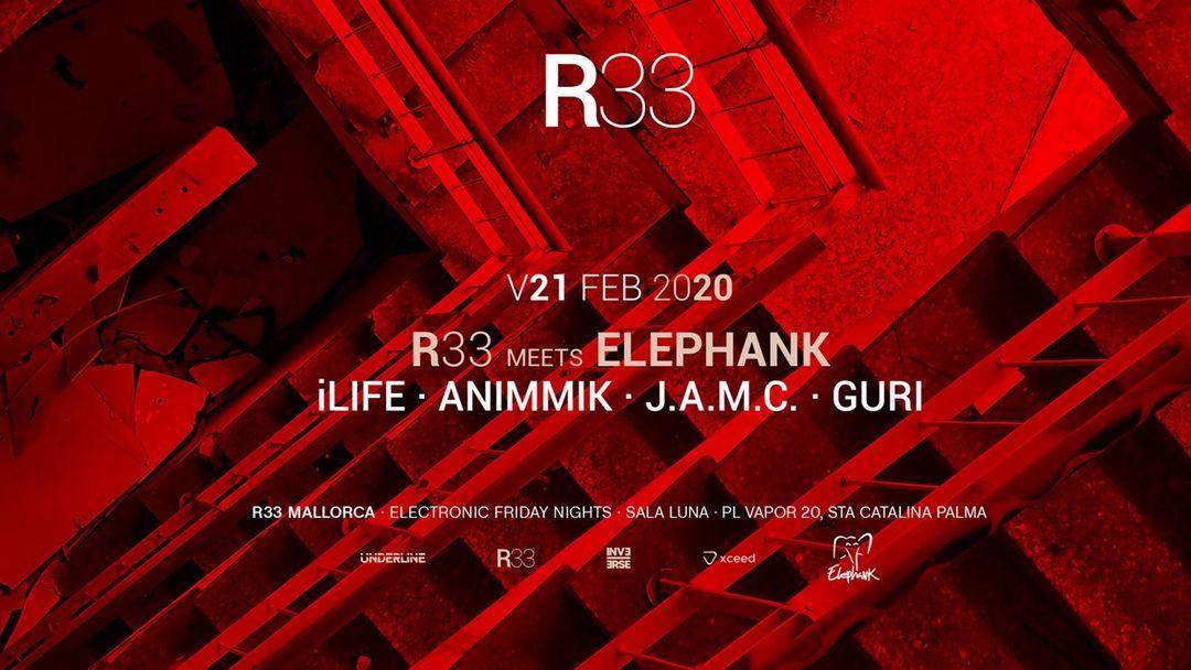 Cartel del evento R33 MEETS ELEPHANK