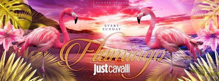 Cover for event: SUNDAY NIGHT - FLAMINGO