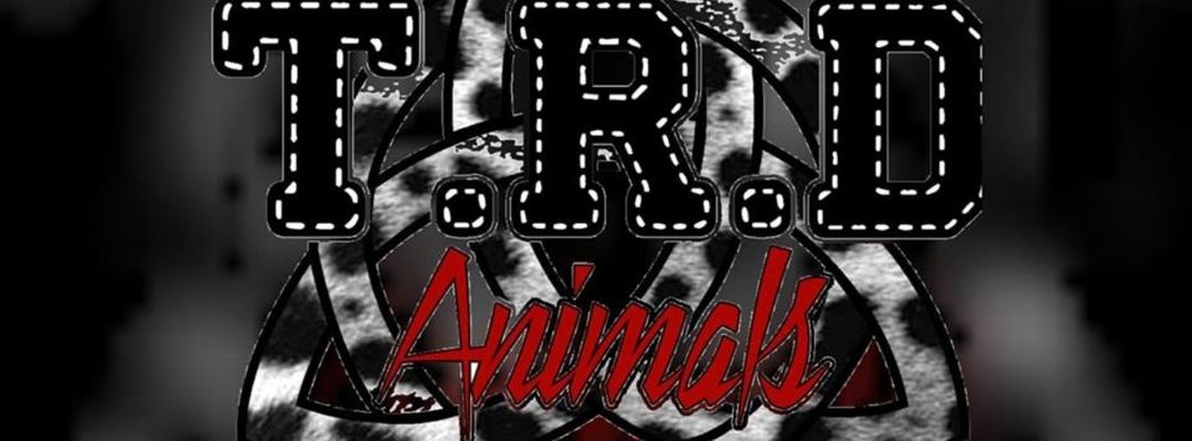 Cartel del evento T. R. D Animals Techno Festival Benefico