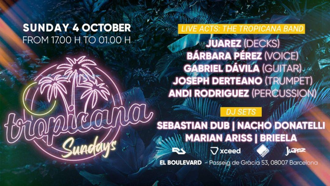 Cartell de l'esdeveniment Tropicana Sundays - Domingos Sabrosónicos! (Live Acts & Dj Sets)